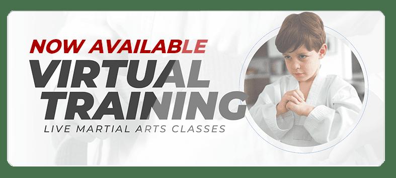 VIRTUALPOPUPSPARK.1.1, Legacy Martial Arts in  Kennett, PA